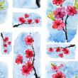 Spring cherry blossoms — Stock Photo