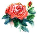 Rose rosse — Foto Stock