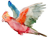 Watercolor parrot. — Stock Photo