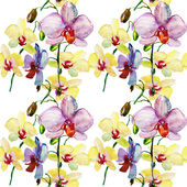 Pink and yellow orchids pattern — Stock Photo