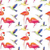 Watercolors birds — Stock Photo