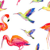 Watercolors birds — Stock Photo