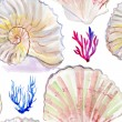 Sea shells and corals pattern — Stock Photo #48488791