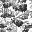 Rowan Berries Twig Seamless Pattern — 图库照片 #51124841