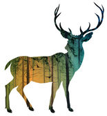 Deer — Stock Vector