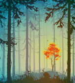 Forest — Stock Vector