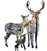 Deer family — Stock Vector