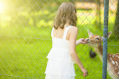 Little Caucasian Girl Feeding Roe Behind Fence — Stock Photo