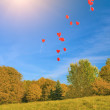 Plenty of Red Balloons In Blue Skies — Stock Photo