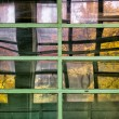 Photo: Color reflection window in the old workshop