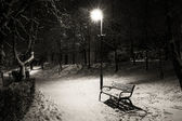 One bench in the park in winter night — Stock Photo