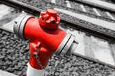 Typical red fire hydrant details along the tram rails — Stock Photo