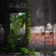 Door in a desolate industrial building — Stock Photo