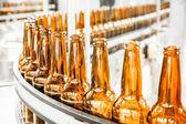 Beer bottles on the conveyor belt — Stockfoto