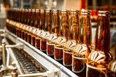 Beer bottles on the conveyor belt — Stock Photo