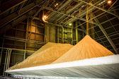 Gypsum storage hall — Stock Photo