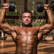 Male bodybuilder doing shoulder press whit dumbbell — Stock Photo #26442973