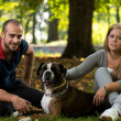 Happy Couple With German Boxer — Stock Photo #33848879