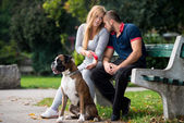 Pretty Young Family With Dogs — Stock Photo