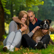 Happy Couple With German Boxer — Stock Photo #33855881