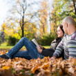 Beautiful Young Couple Using Digital Tablet — Lizenzfreies Foto