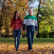 Couple Holding Hands and Walking in the Woods During — Stock Photo