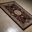 Persian Rug Isolated On Tiles — Stock Photo