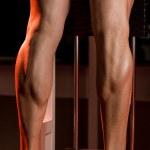 Постер, плакат: Amazing legs