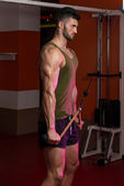 Uomo muscoloso potente esercizio tricipiti — Foto Stock