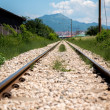 Railroad Track Goes Ahead — Stock Photo #40871635