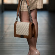Model Showing Fancy Bag — Stock Photo #41285063