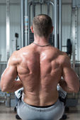 Close-Up Of A Muscular Back — Stock Photo