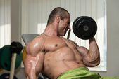 Young Man Working Out Biceps Dumbbell Concentration Curls — Stock Photo