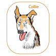 Stock Vector: Collie