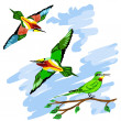 Colorful birds fly in sky — Stock Vector #42104501