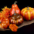 Thanksgiving composition — Stock Photo #33652991
