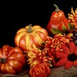 Thanksgiving composition — Stock Photo