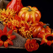 Thanksgiving composition — Stock Photo #33652999