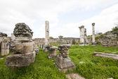 Ruins of Magnesia — Stock Photo