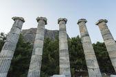 Columns of Priene — Stock Photo