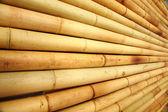 Bambu çit doku — Stok fotoğraf