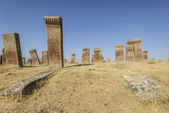 Tombstones of seljuks in Ahlat turkey — Stock Photo