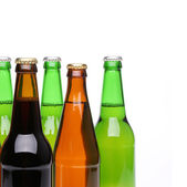 Closed bottles of beer on a white background — Stock Photo