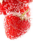 Sparkling wine (champagne) and strawberry — Stock Photo