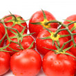Photo of very fresh tomatoes — Stock Photo