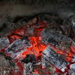 Live coals in the oven against black background — Stock Photo #27558283