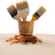 Brush, basket, crab on sand — Stock Photo #27931847