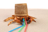 Basket, crab on sand and tubules for a cocktail — Stock Photo