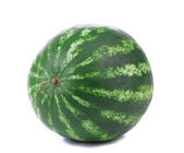 Water melon on a white background. Isolated. — Stock Photo