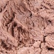 Chocolate ice cream macro detailed texture. — Photo
